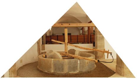 Galeria Municipal Lagar do Azeite
